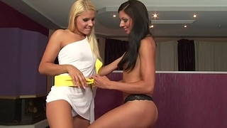 VRpussyVision.com - Blonde and brunette lesbian - 2 orgasms